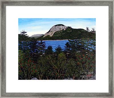 Sugarloaf Hill Framed Print by Barbara Griffin