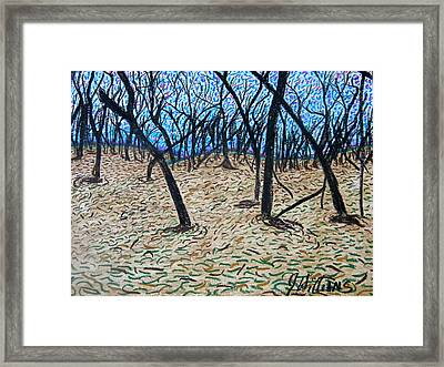 Sully's Hill Framed Print by Josh  Williams