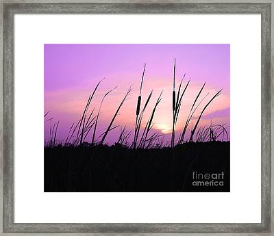 Sultry Sunset Framed Print by Al Powell Photography USA