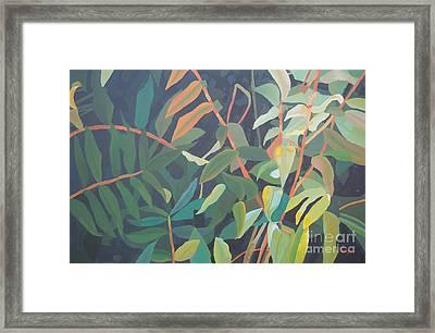Sumac Framed Print