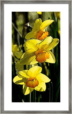Sumi-e In Yellow Framed Print