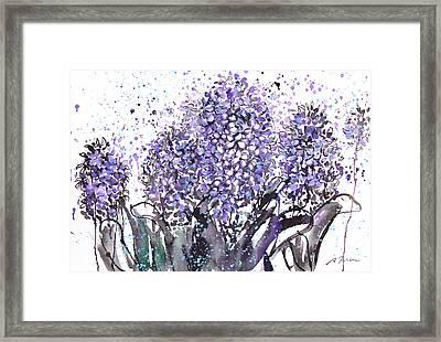 Sumie No.13 Hyacinth Framed Print