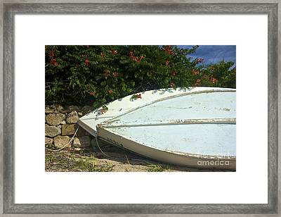 Summer  Framed Print by Amazing Jules