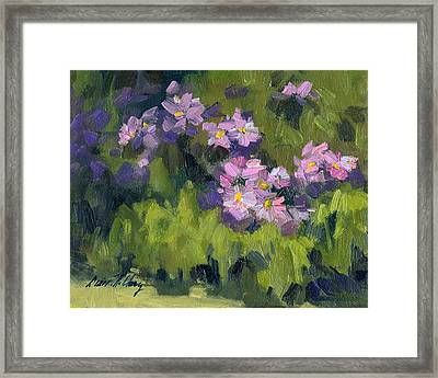 Summer Asters Framed Print by Diane McClary