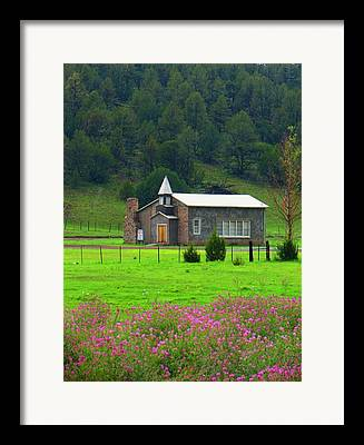 Rocky Mountain Beeweed Framed Prints