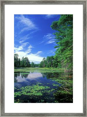 Summer At Breakneck Pond Framed Print