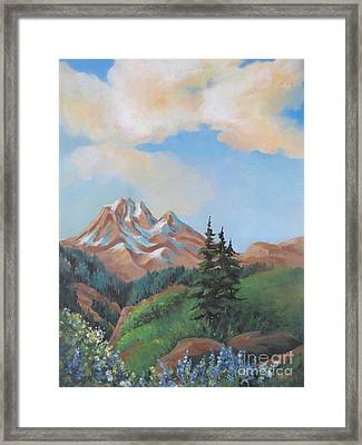 Summer At Kananaskis 2 Framed Print