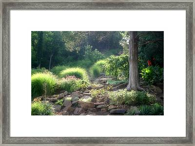 Summer At The Park Framed Print by Carolyn Fletcher
