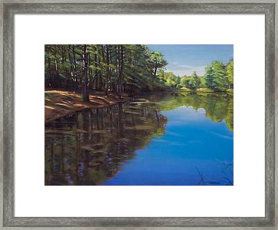 Summer At The Pond Framed Print by Christopher Reid