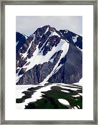 Summer At The Top Of Whistler Framed Print by Christine Burdine