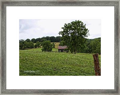 Framed Print featuring the photograph Summer Barn by Denise Romano