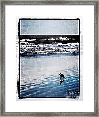Summer Beach Framed Print by Perry Webster