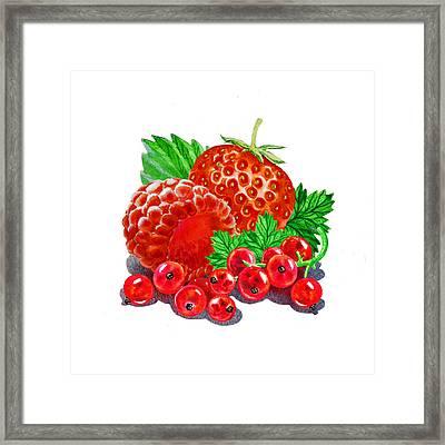 Summer Berries Framed Print by Irina Sztukowski