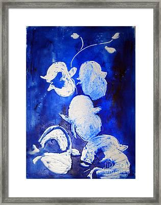 Summer Bloom Framed Print by CJ  Rider