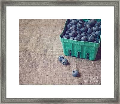 Summer Blueberries Framed Print by Bethany Helzer