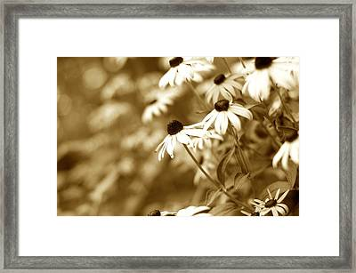 Summer Burn Framed Print