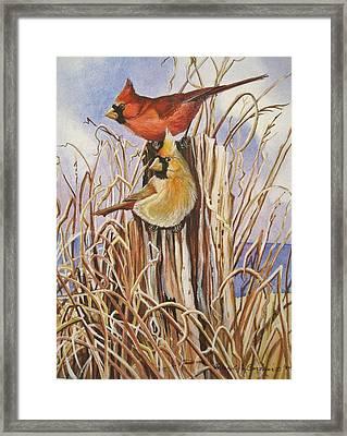 Summer Cardinals Framed Print by Cheryl Borchert
