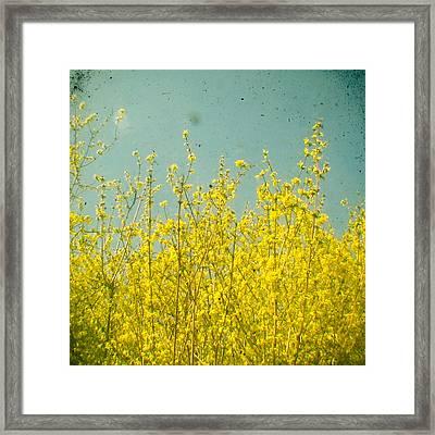 Summer Framed Print by Cassia Beck
