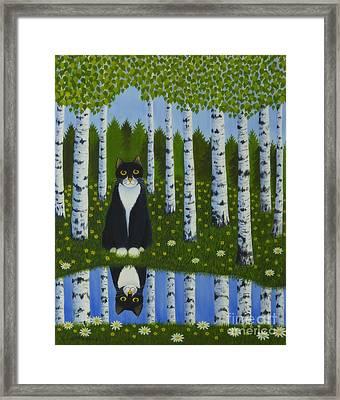 Summer Cat Framed Print by Veikko Suikkanen