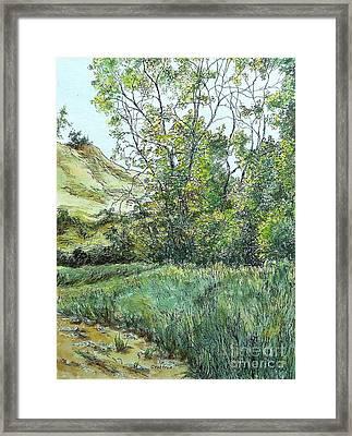 Summer Day Framed Print by Elizabeth Crabtree