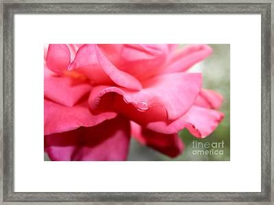 Summer Day Framed Print by Krissy Katsimbras