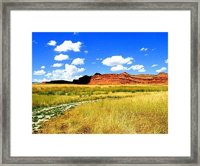 Framed Print featuring the photograph Summer Day On Ranch Land by Antonia Citrino