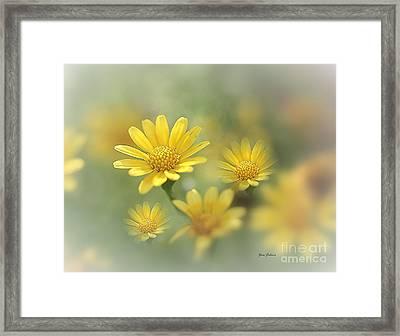 Summer Dream Framed Print by Yumi Johnson