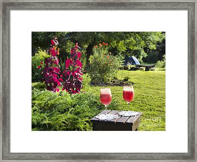Summer Drink Framed Print