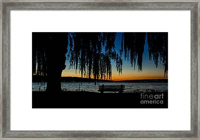 Summer Evening At Stewart Park Framed Print