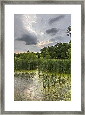 Summer Evening Clouds Framed Print