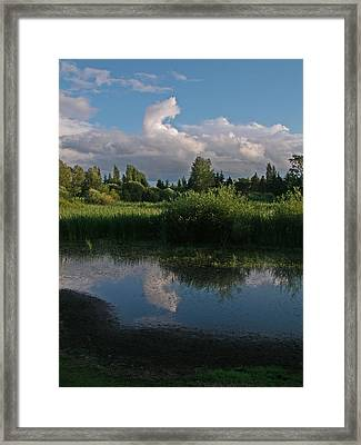 Framed Print featuring the photograph Summer Evening by Laurie Stewart