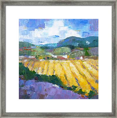 Summer Field 2 Framed Print