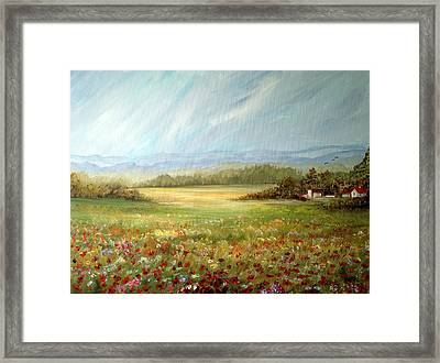 Summer Field At The Farm Framed Print