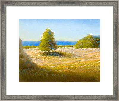 Summer Field Framed Print by Bruce Richardson