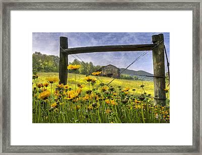 Summer Fields Framed Print by Debra and Dave Vanderlaan