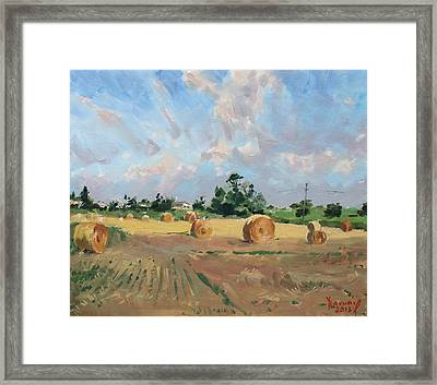 Summer Fields In Georgetown On Framed Print by Ylli Haruni