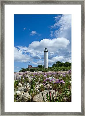 Framed Print featuring the photograph Summer Flowers At Lighthouse by Kennerth and Birgitta Kullman