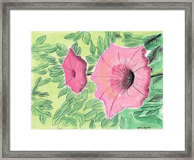 Summer Flowers Framed Print by David Jackson