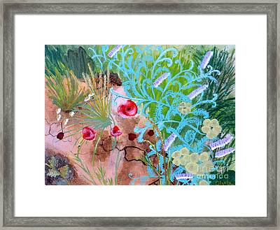Summer Flowers Framed Print by Olga R