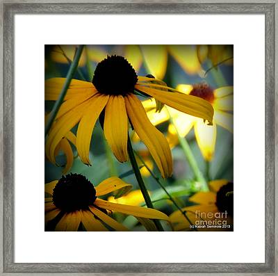 Summer Flowers Framed Print