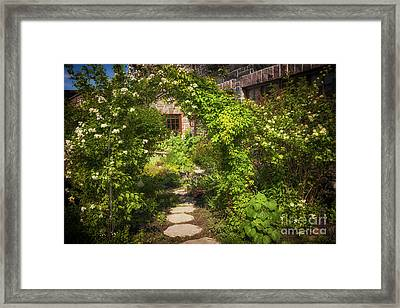 Summer Garden And Path Framed Print by Elena Elisseeva