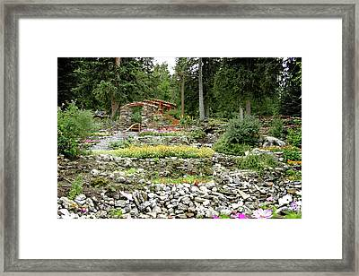 Framed Print featuring the photograph Summer Garden by Margaret Buchanan