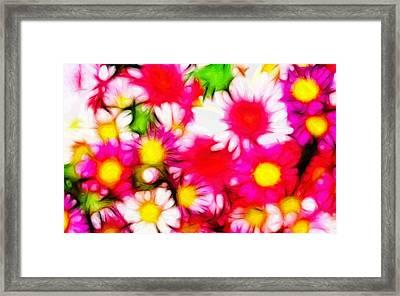 Summer Garden Framed Print by Steve K
