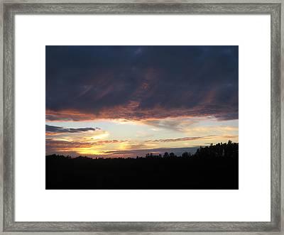 Summer Glow Framed Print by Brandie Marshall