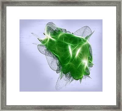 Summer Green Framed Print by Linda Phelps