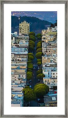 Summer Green On Lombard Street Framed Print