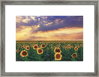 Framed Print featuring the photograph Summer Haze by Kadek Susanto