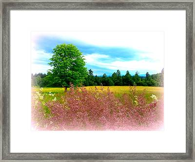 Summer Hues Framed Print by The Creative Minds Art and Photography