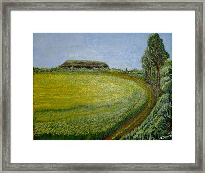 Summer In Canola Field Framed Print by Felicia Tica