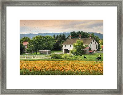 Summer In Gratz Framed Print